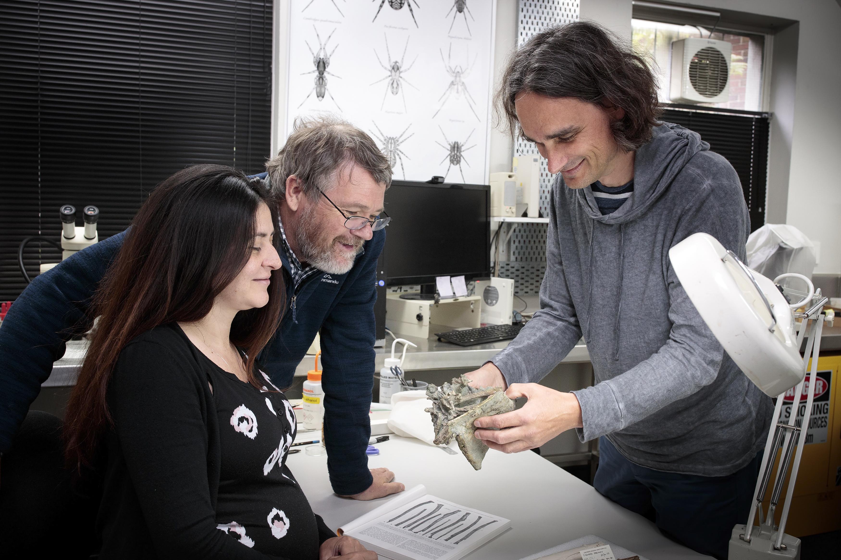 Deze onderzoekers vonden de pinguïn