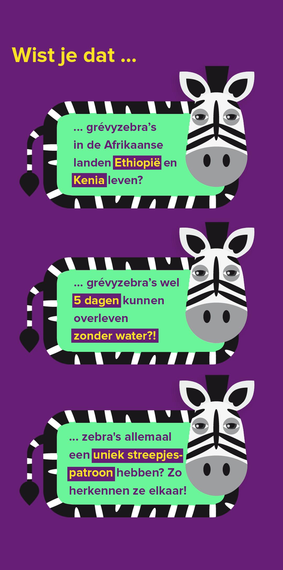 zebraweetjes